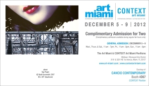 Art Miami Comp