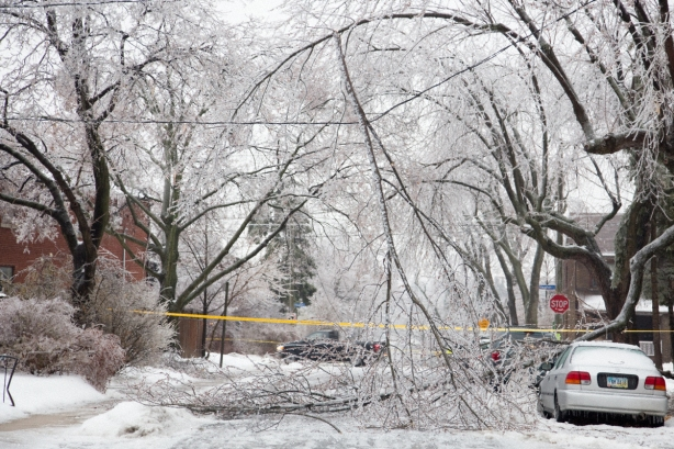 Ice Storm, awe, Toronto, David Goorevitch, aweandthensome, Blocked Road